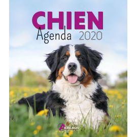 AGENDA CHIEN 2020