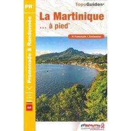 LA MARTINIQUE À PIED D972