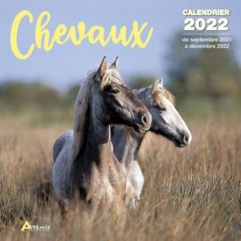 CALENDRIER CHEVAUX 2022