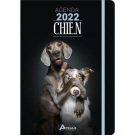 AGENDA CHIEN 2022